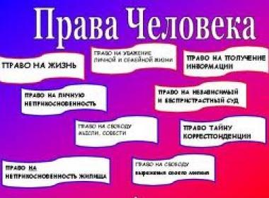Международная конференция «Проблемы защиты прав граждан России, проживающих за рубежом»