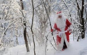 """Дед Мороз зажжёт самую """"высокую"""" ёлку России в Ингушетии"""